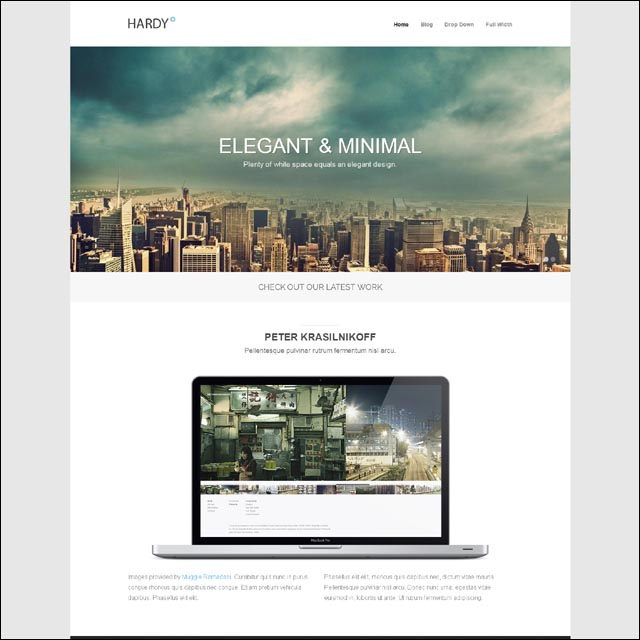 143+ Responsive WordPress Themes for Personal Blogs - Design News