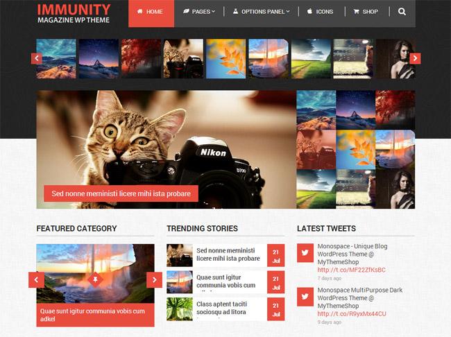 29+ Modern Magazine WordPress Themes 2014 - Design News
