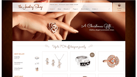 WordPress eCommerce Themes 2014