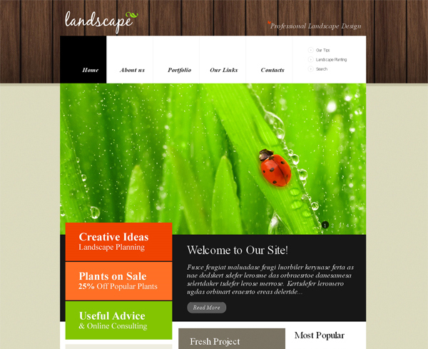 9+ Amazing WordPress Themes With Jquery Slider