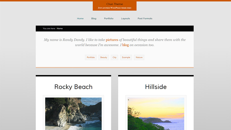 25+ Excellent Free WordPress Portfolio Themes