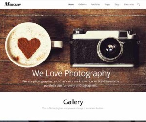 170+ Impressive WordPress Photography Themes 2014