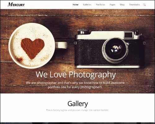 170+ Impressive WordPress Photography Themes 2014