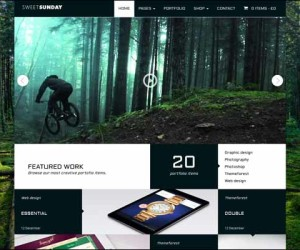 222+ High Quality WordPress Portfolio Themes