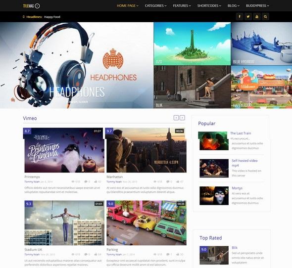 29+ Elegant Premium WordPress Magazine Themes