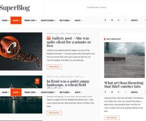 40+ Great Premium WordPress Personal Blog Themes 2014