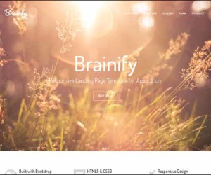 94+ Amazing Bootstrap Landing Page Templates 2014