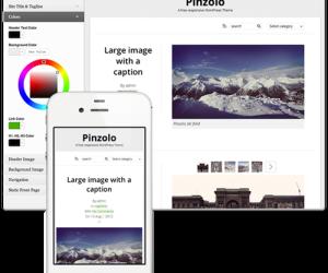 20+ Attractive Minimal WordPress Themes