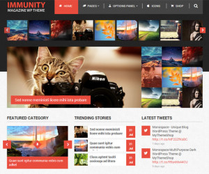 29+ Modern Magazine WordPress Themes 2014