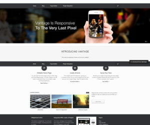 69+ Awesome Free and Premium Business WordPress Templates