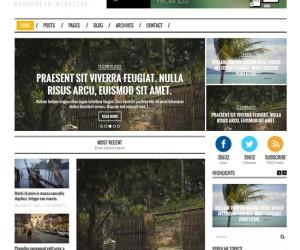 74+ Attractive Responsive Magazine News WordPress Themes