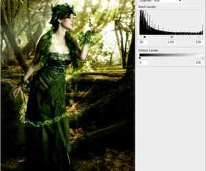 Amazing Tutorial on Creating a Forest Magical Scene in Photoshop