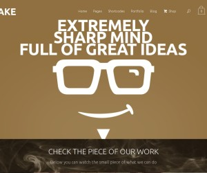 Top 40 Inspiring WordPress Portfolio Themes 2014