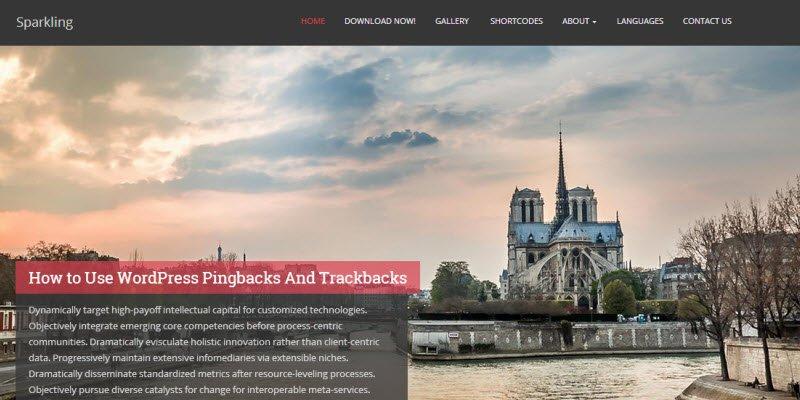 19+ Amazing Free WordPress Photography Theme