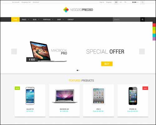 Responsive eCommerce WordPress Themes